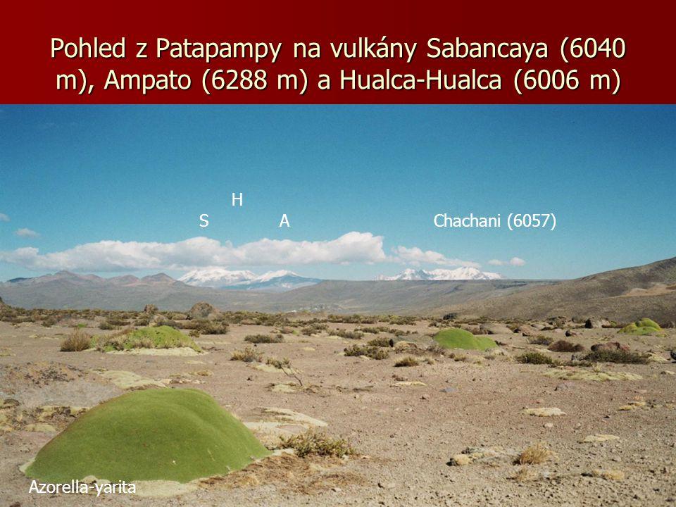 Pohled z Patapampy na vulkány Sabancaya (6040 m), Ampato (6288 m) a Hualca-Hualca (6006 m)