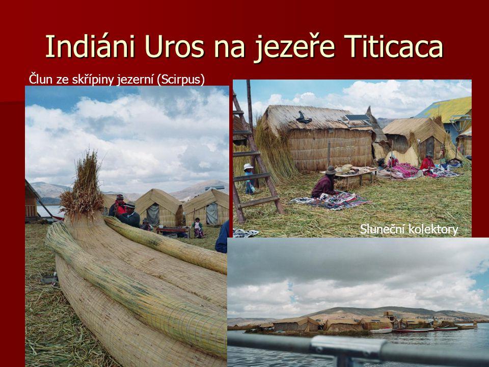 Indiáni Uros na jezeře Titicaca