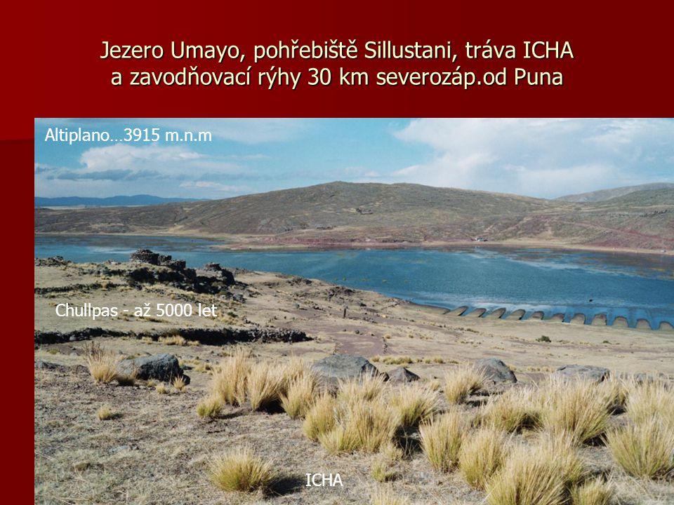 Jezero Umayo, pohřebiště Sillustani, tráva ICHA a zavodňovací rýhy 30 km severozáp.od Puna