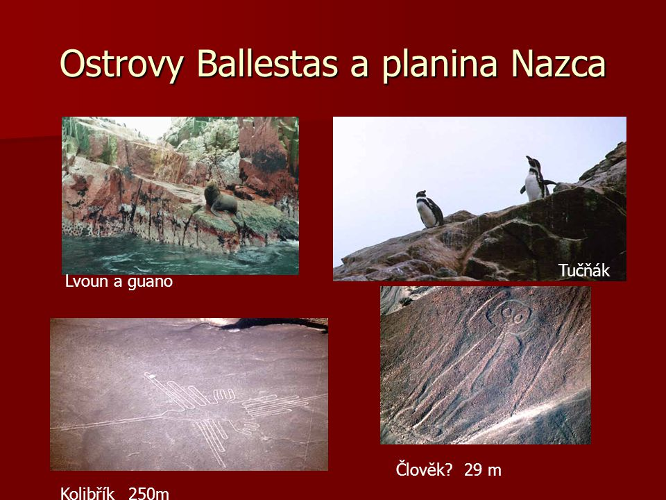 Ostrovy Ballestas a planina Nazca
