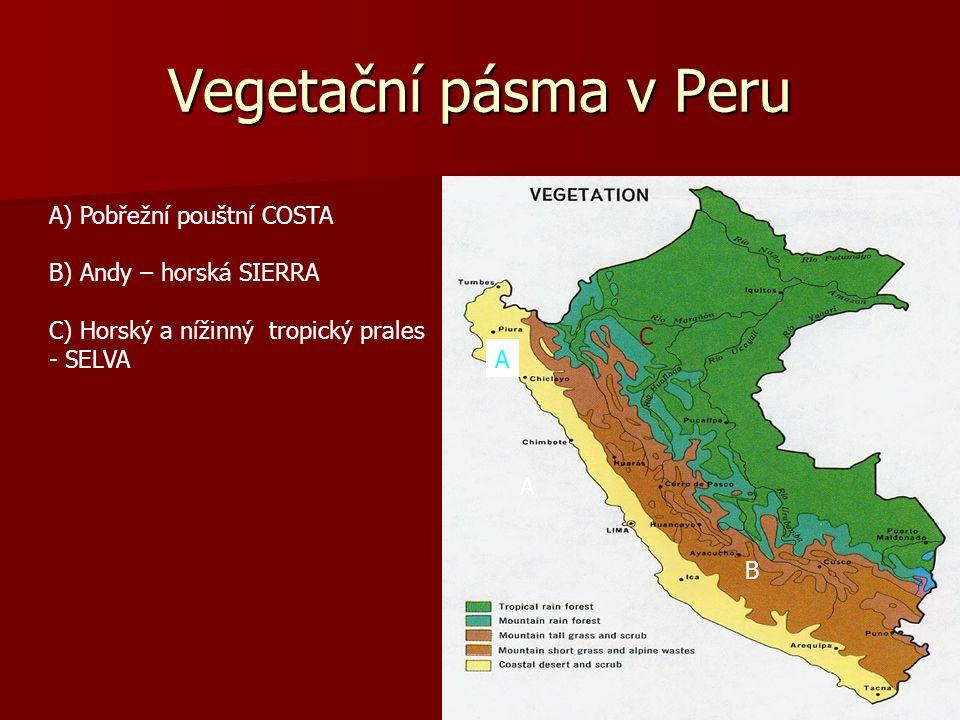Vegetační pásma v Peru A) Pobřežní pouštní COSTA