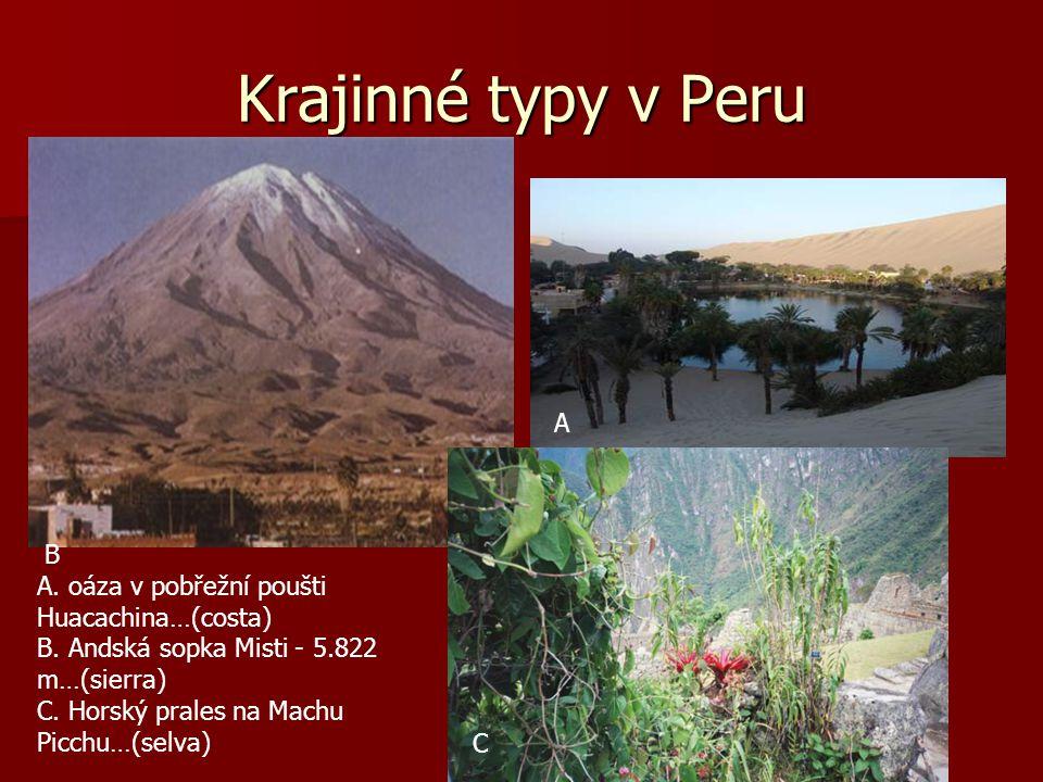 Krajinné typy v Peru A B A. oáza v pobřežní poušti Huacachina…(costa)