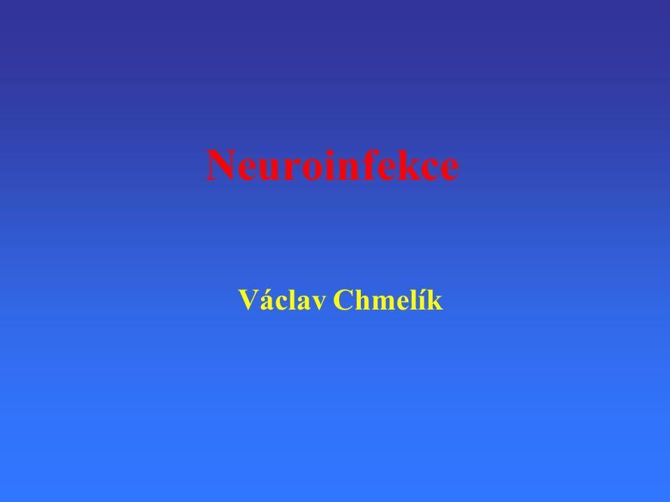 Neuroinfekce Václav Chmelík