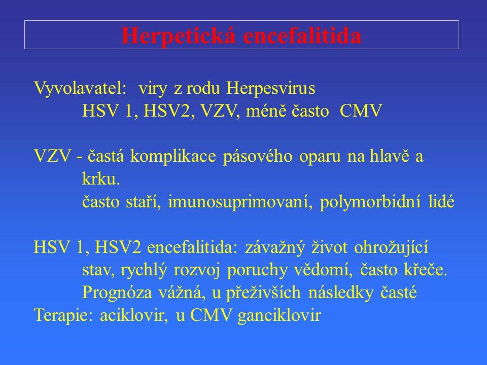 Herpetická encefalitida