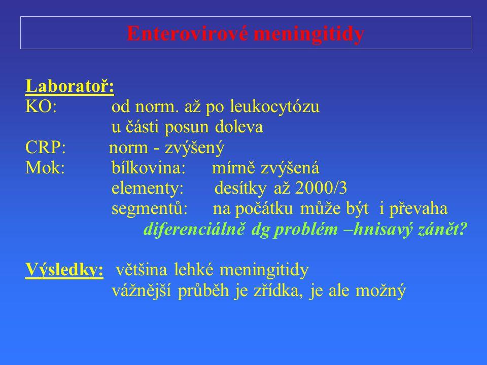 Enterovirové meningitidy