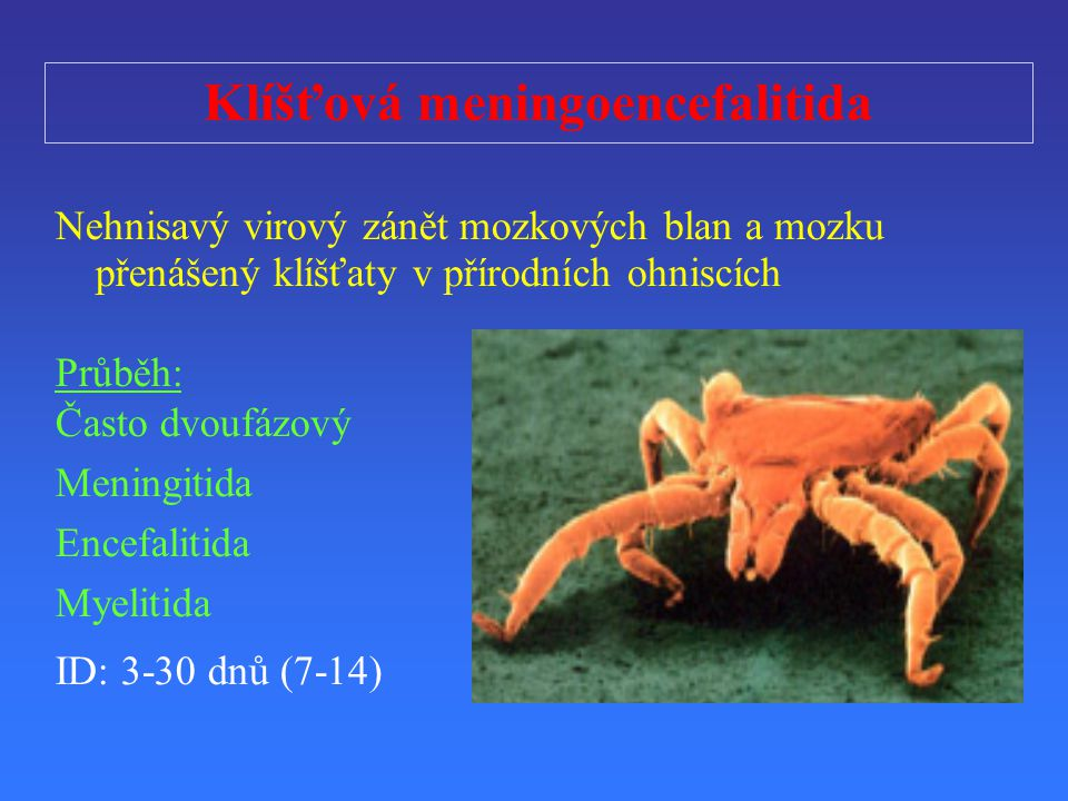 Klíšťová meningoencefalitida