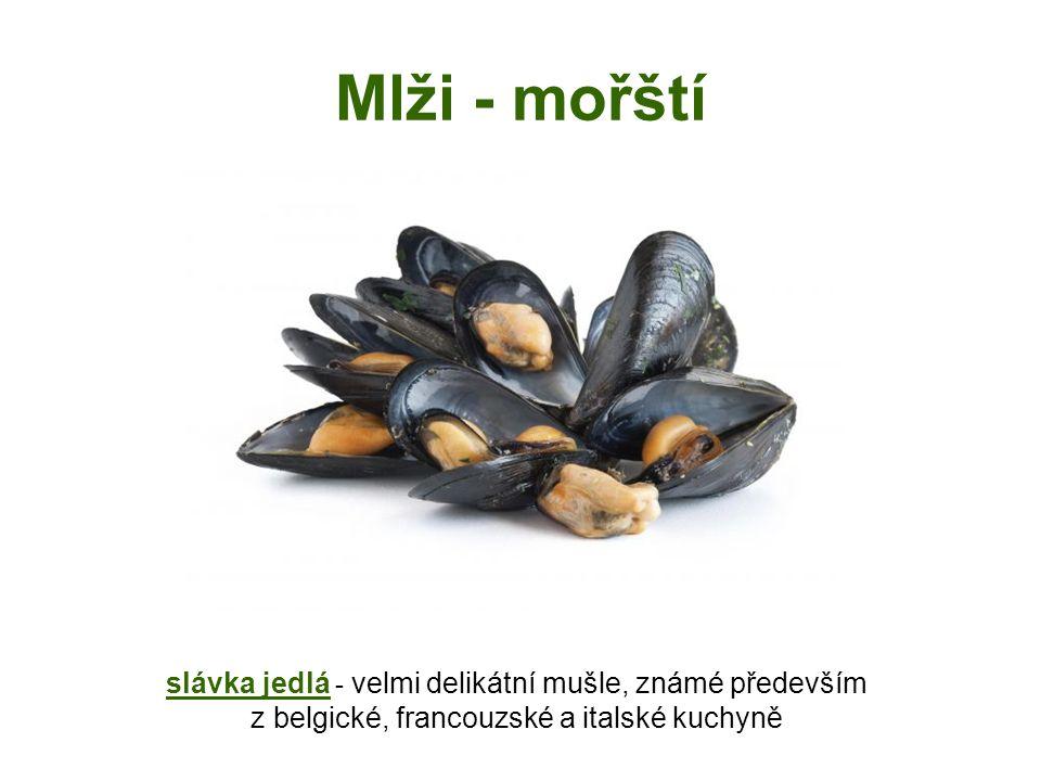 Mlži - mořští slávka jedlá - velmi delikátní mušle, známé především z belgické, francouzské a italské kuchyně.