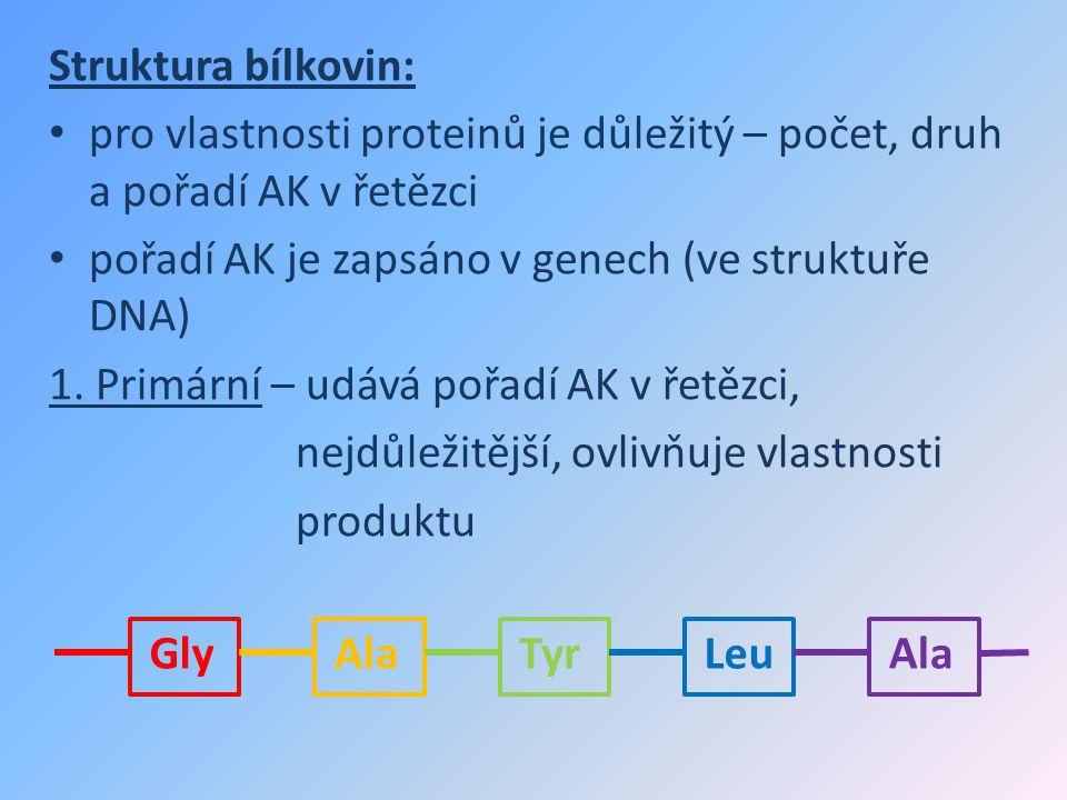 Struktura bílkovin: pro vlastnosti proteinů je důležitý – počet, druh a pořadí AK v řetězci. pořadí AK je zapsáno v genech (ve struktuře DNA)