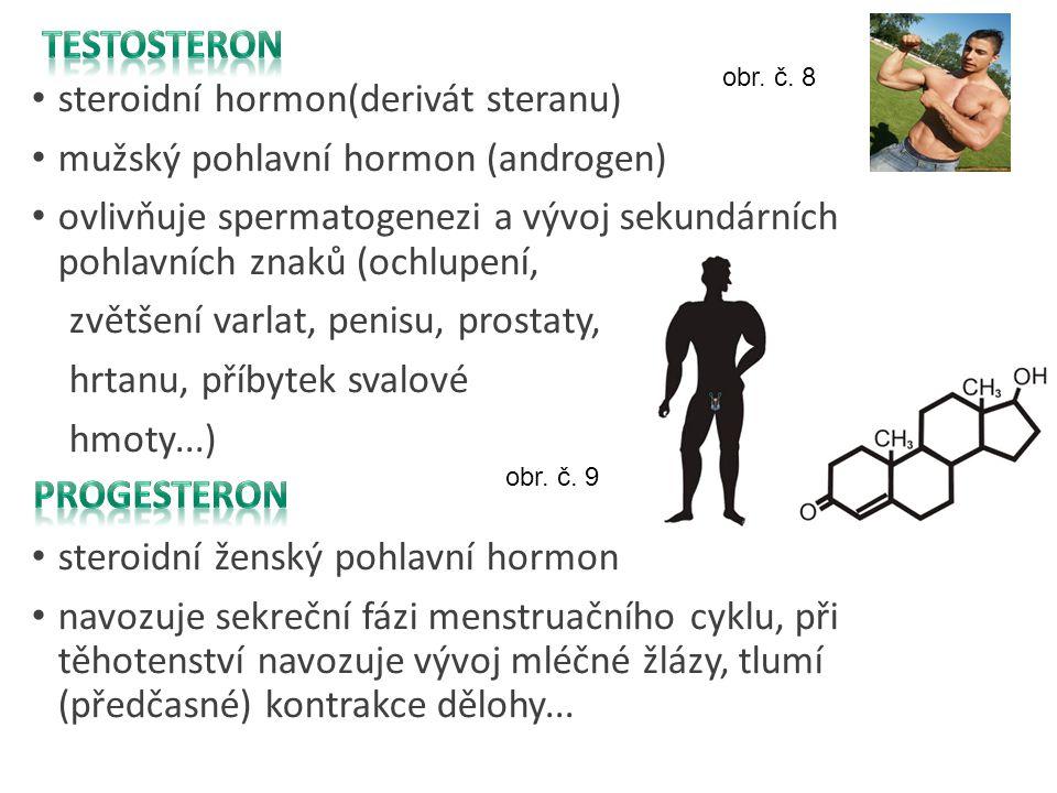 Testosteron Progesteron