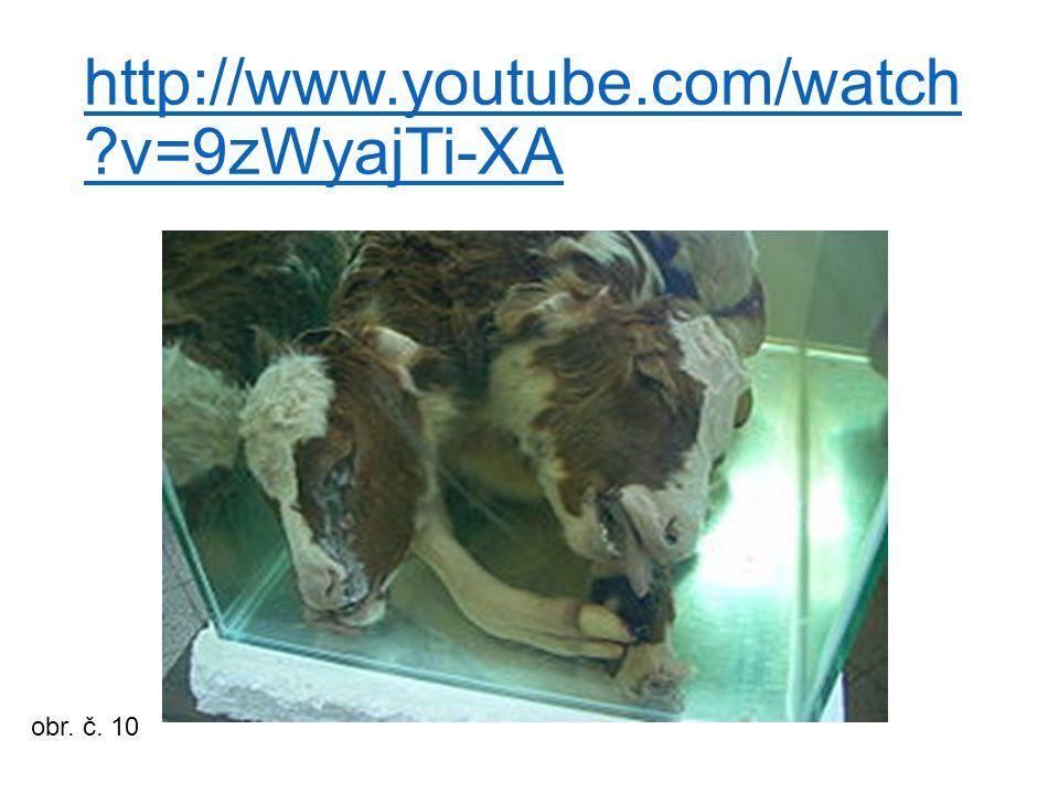 http://www.youtube.com/watch v=9zWyajTi-XA obr. č. 10