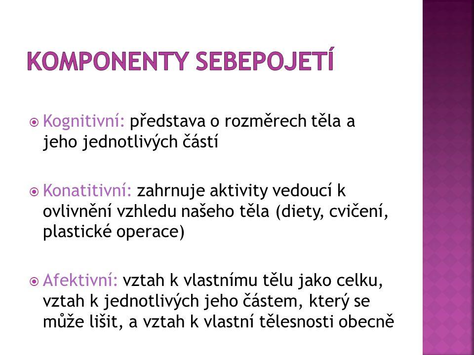 Komponenty sebepojetí