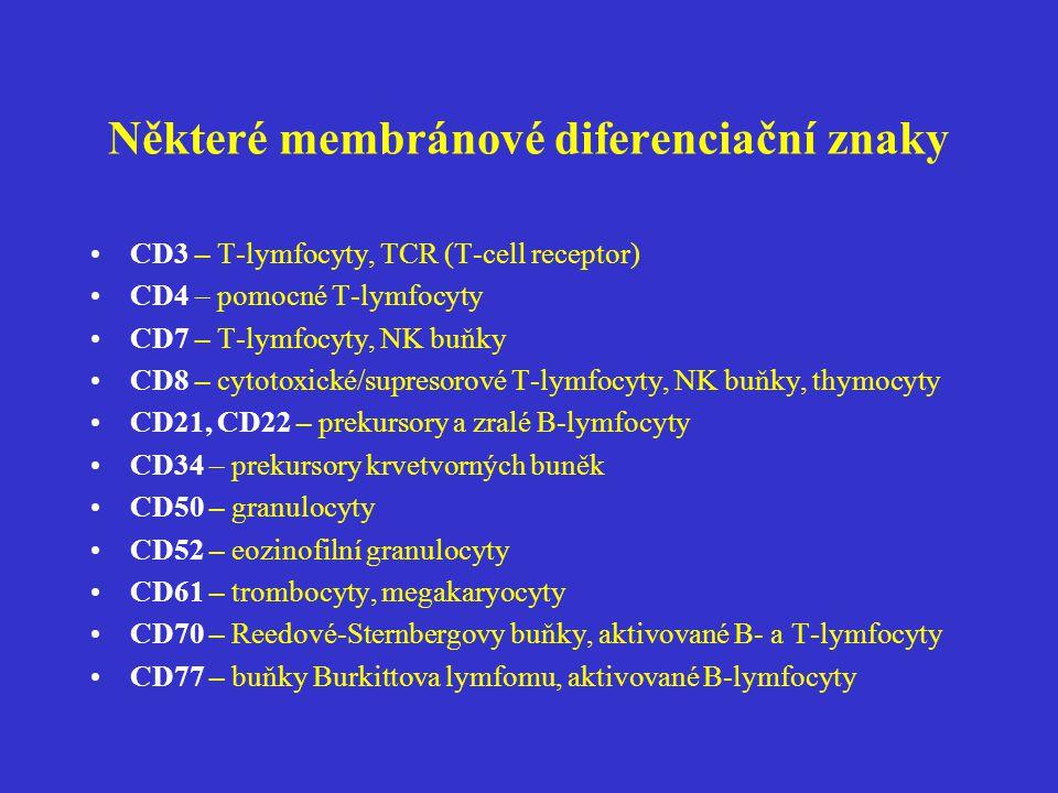 Některé membránové diferenciační znaky