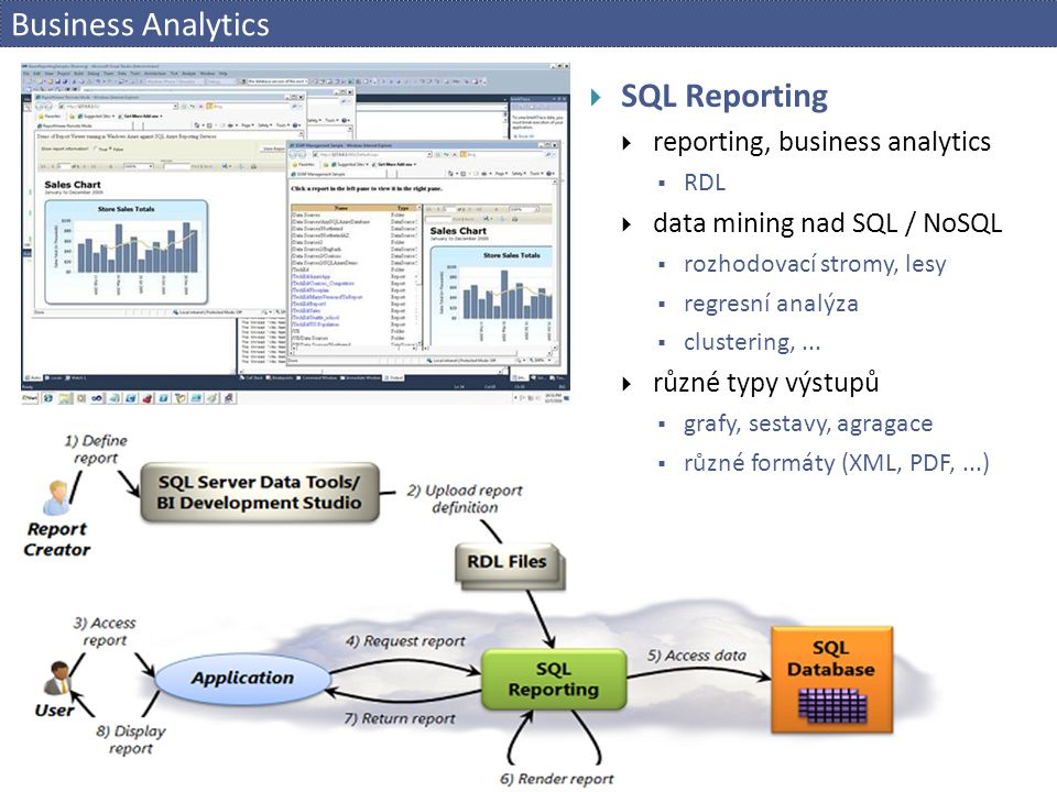 Business Analytics SQL Reporting reporting, business analytics