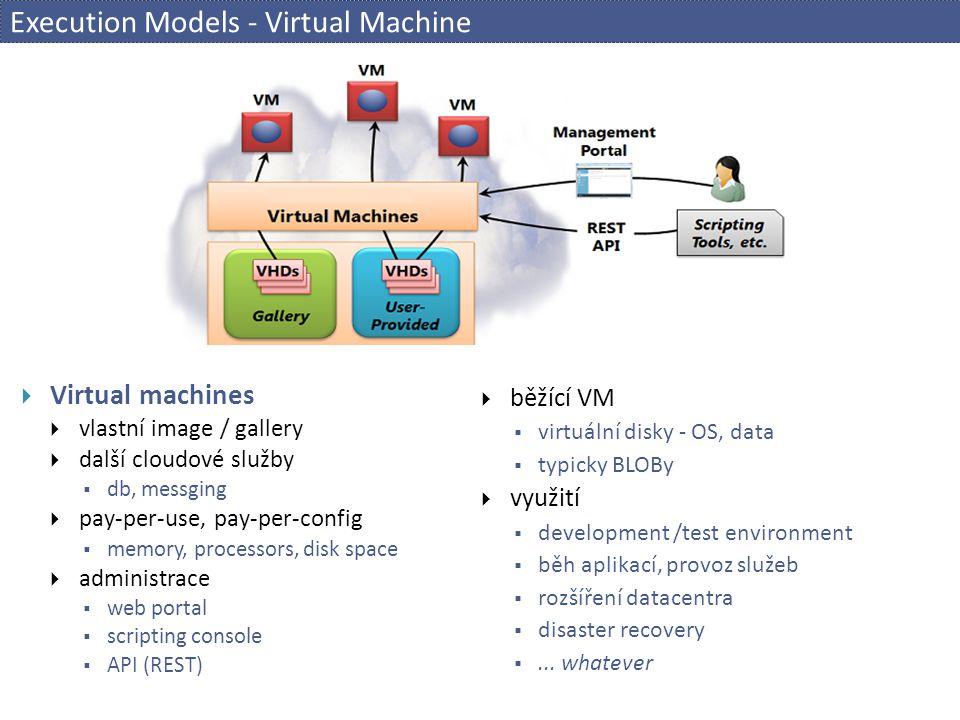 Execution Models - Virtual Machine
