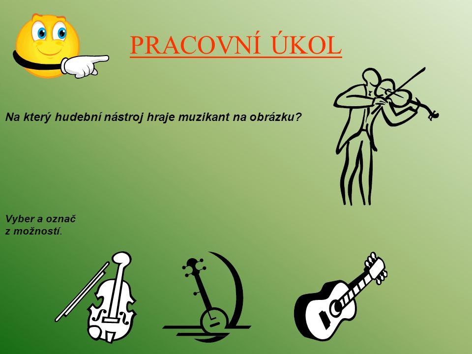 PRACOVNÍ ÚKOL Na který hudební nástroj hraje muzikant na obrázku