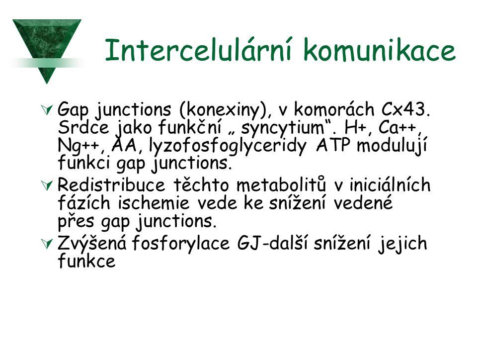 Intercelulární komunikace