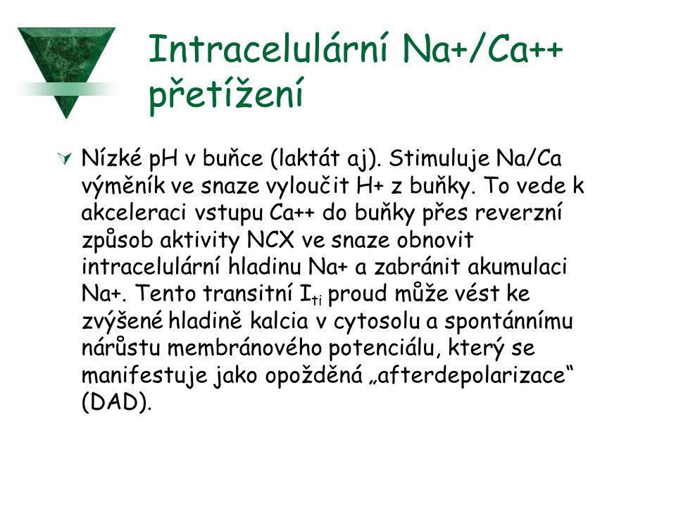 Intracelulární Na+/Ca++ přetížení
