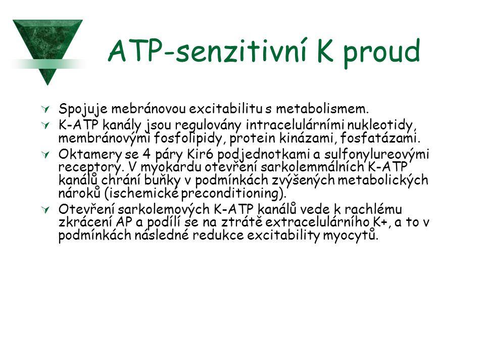 ATP-senzitivní K proud
