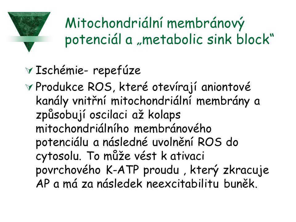 """Mitochondriální membránový potenciál a """"metabolic sink block"""