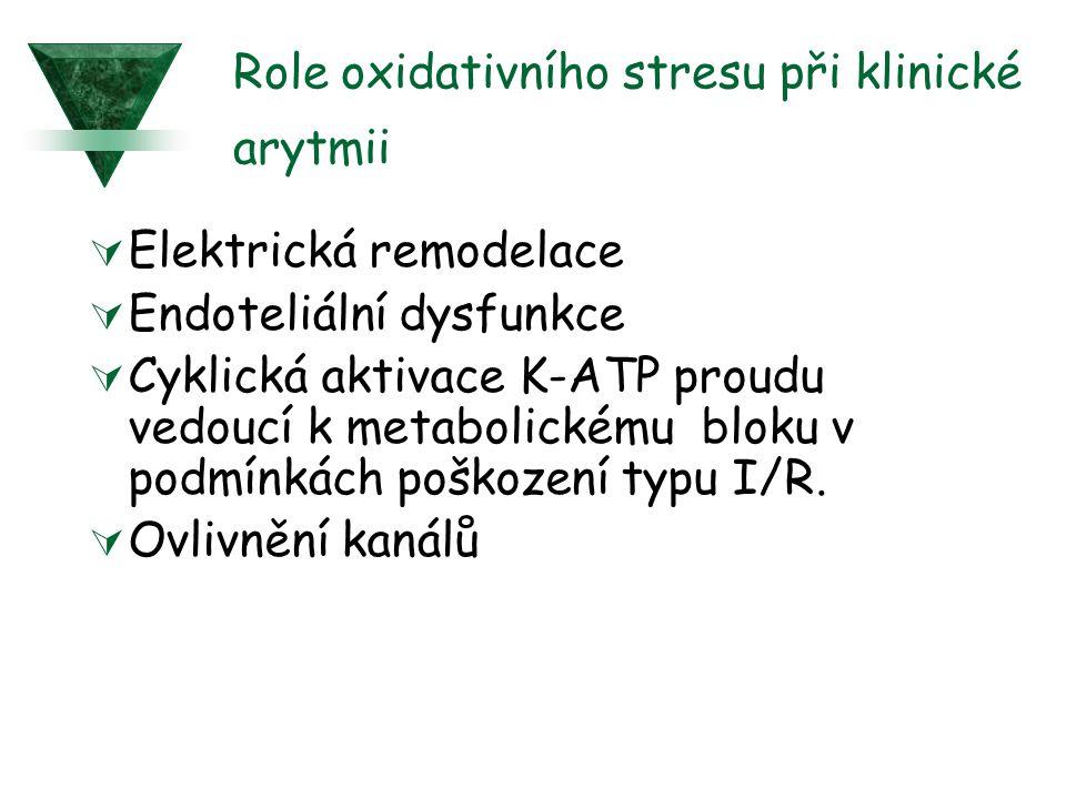 Role oxidativního stresu při klinické arytmii