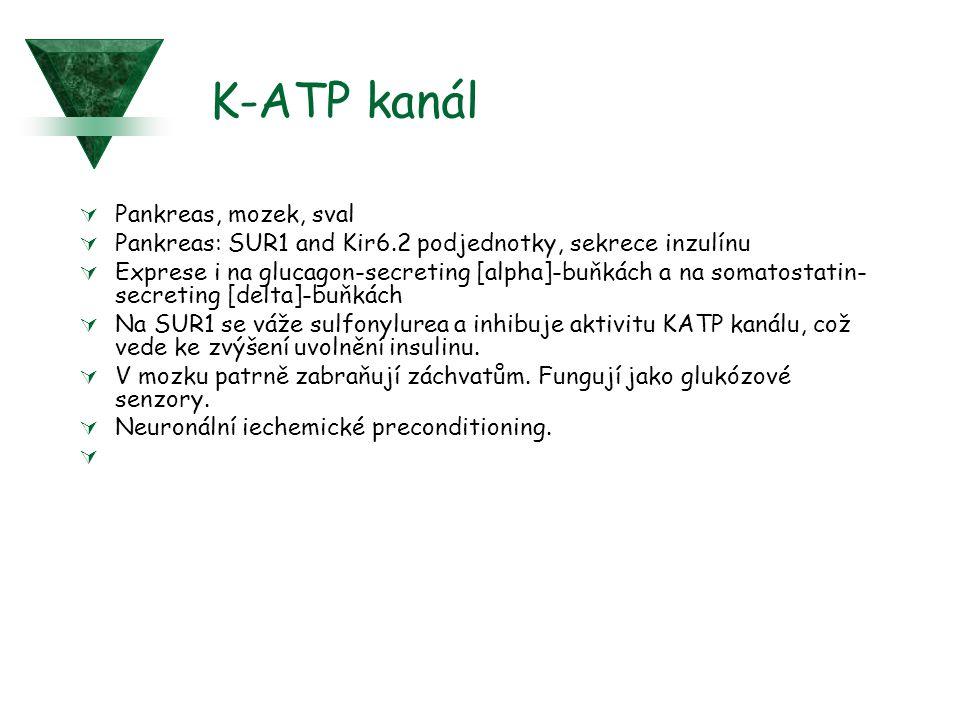 K-ATP kanál Pankreas, mozek, sval