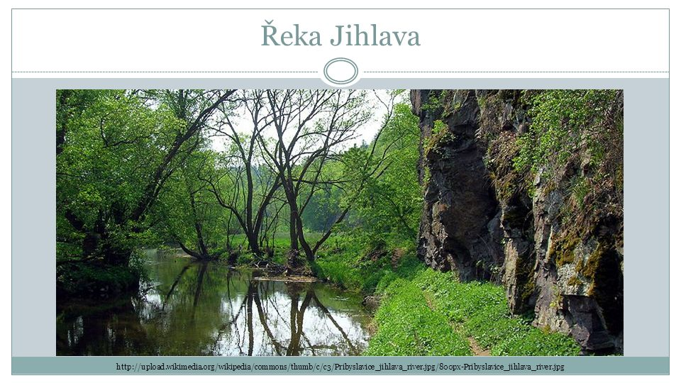 Řeka Jihlava http://upload.wikimedia.org/wikipedia/commons/thumb/c/c3/Pribyslavice_jihlava_river.jpg/800px-Pribyslavice_jihlava_river.jpg.