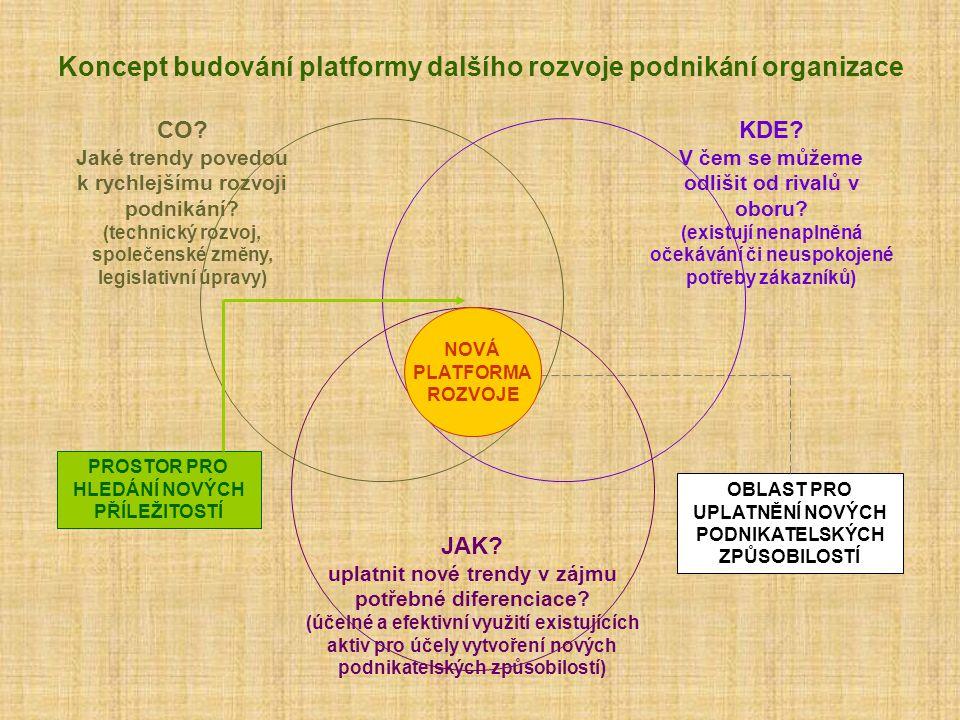 Koncept budování platformy dalšího rozvoje podnikání organizace