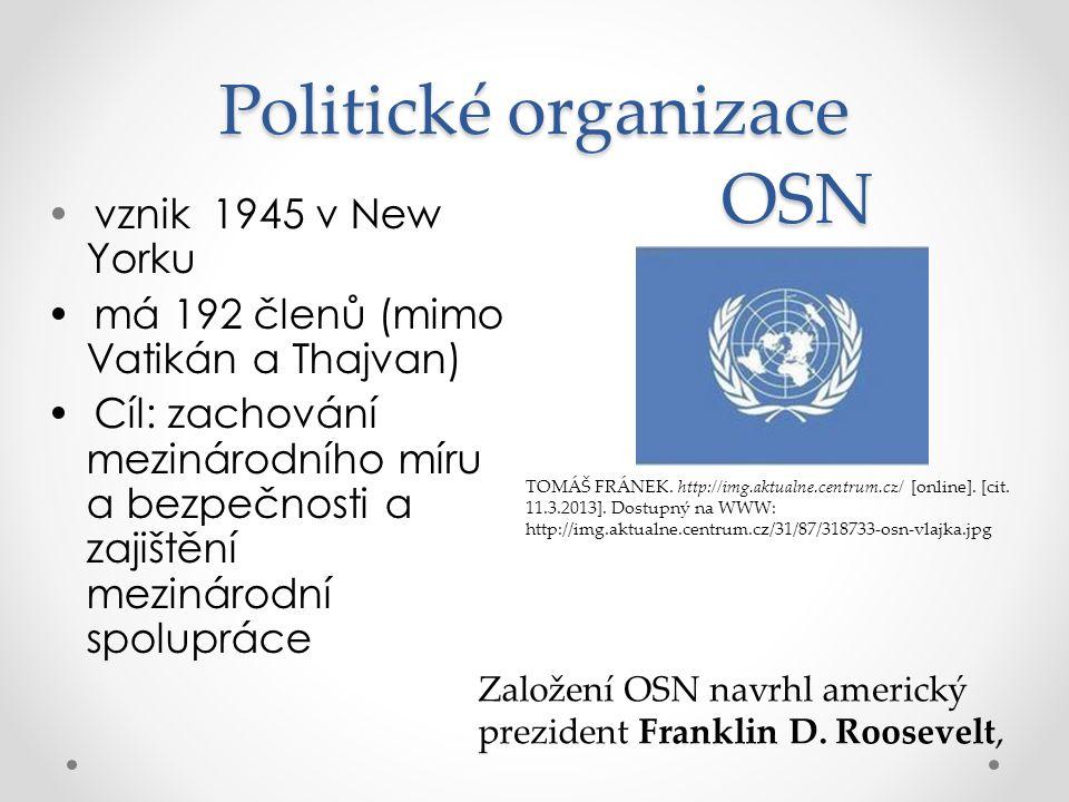 Politické organizace OSN
