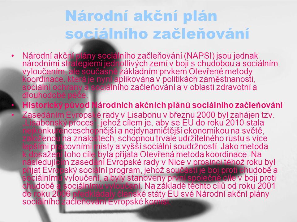 Národní akční plán sociálního začleňování