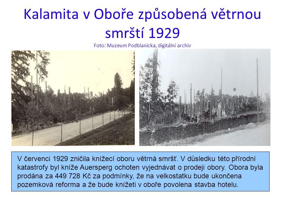 Kalamita v Oboře způsobená větrnou smrští 1929 Foto: Muzeum Podblanicka, digitální archiv