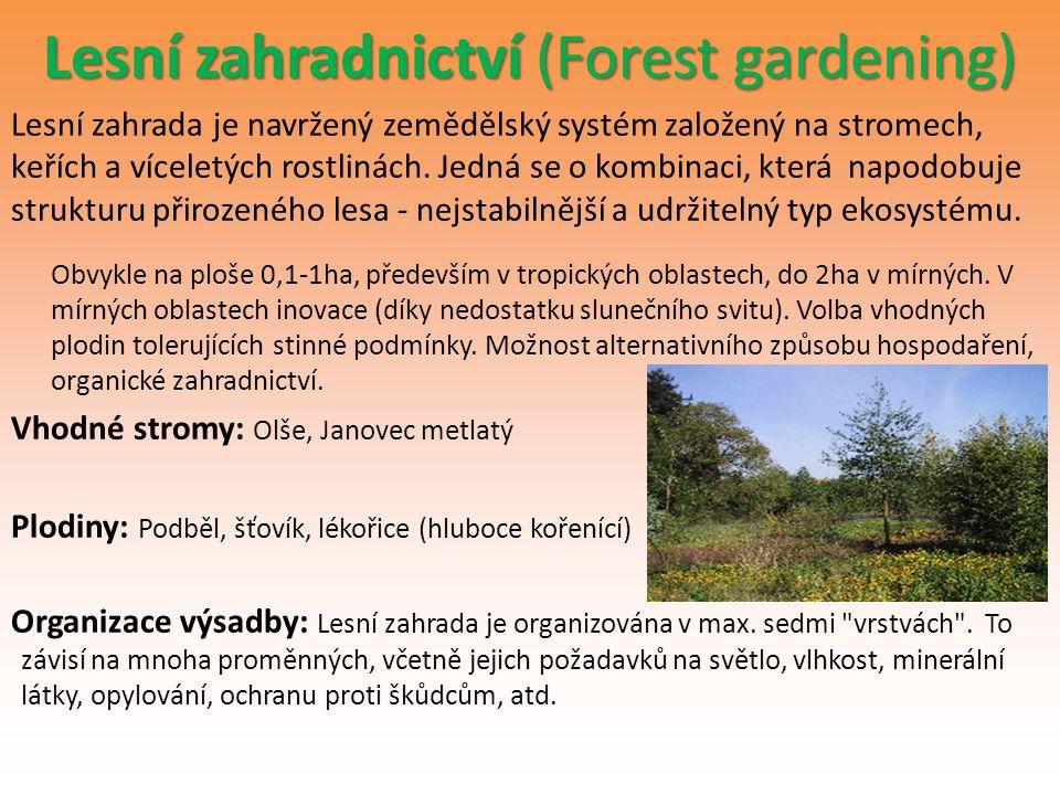 Lesní zahradnictví (Forest gardening)