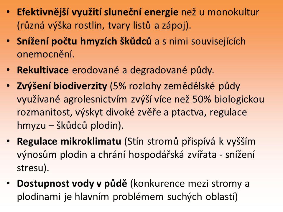 Efektivnější využití sluneční energie než u monokultur (různá výška rostlin, tvary listů a zápoj).