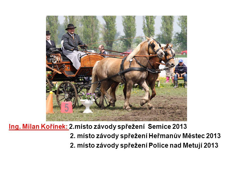 Ing. Milan Kořínek: 2.místo závody spřežení Semice 2013