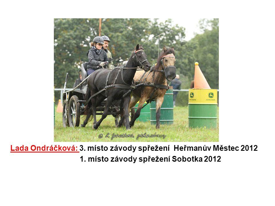 Lada Ondráčková: 3. místo závody spřežení Heřmanův Městec 2012