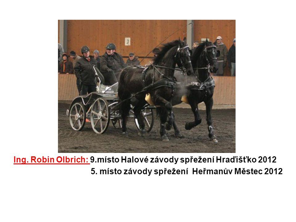 Ing. Robin Olbrich: 9.místo Halové závody spřežení Hraďišťko 2012