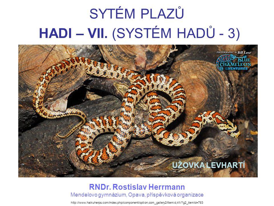 SYTÉM PLAZŮ HADI – VII. (SYSTÉM HADŮ - 3)