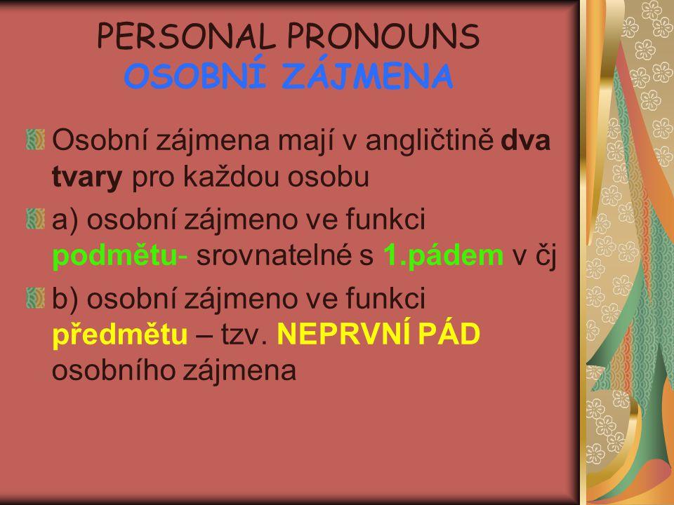 PERSONAL PRONOUNS OSOBNÍ ZÁJMENA