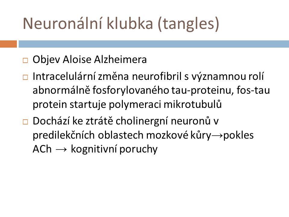 Neuronální klubka (tangles)