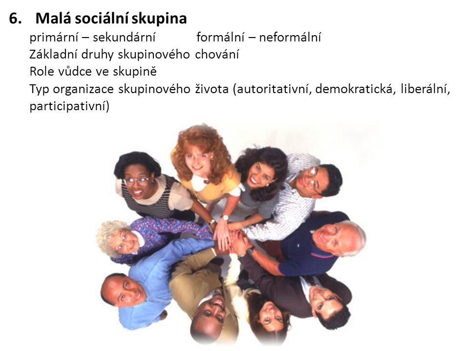 Malá sociální skupina primární – sekundární formální – neformální