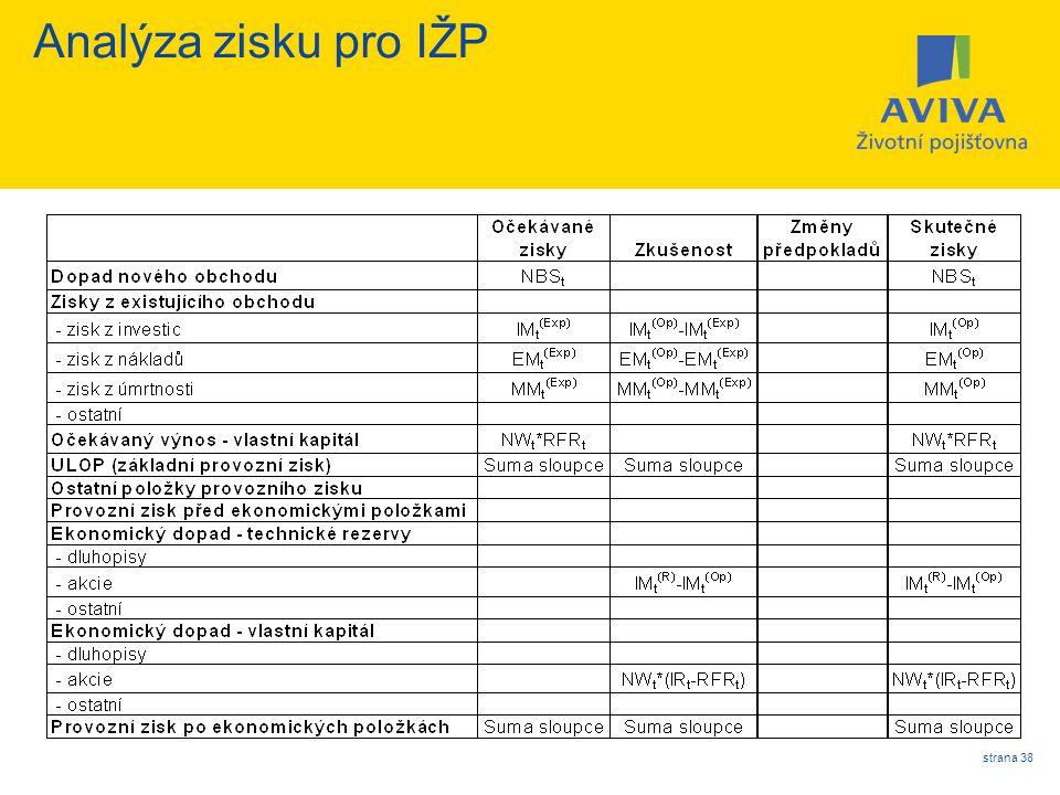 Analýza zisku pro IŽP strana 38