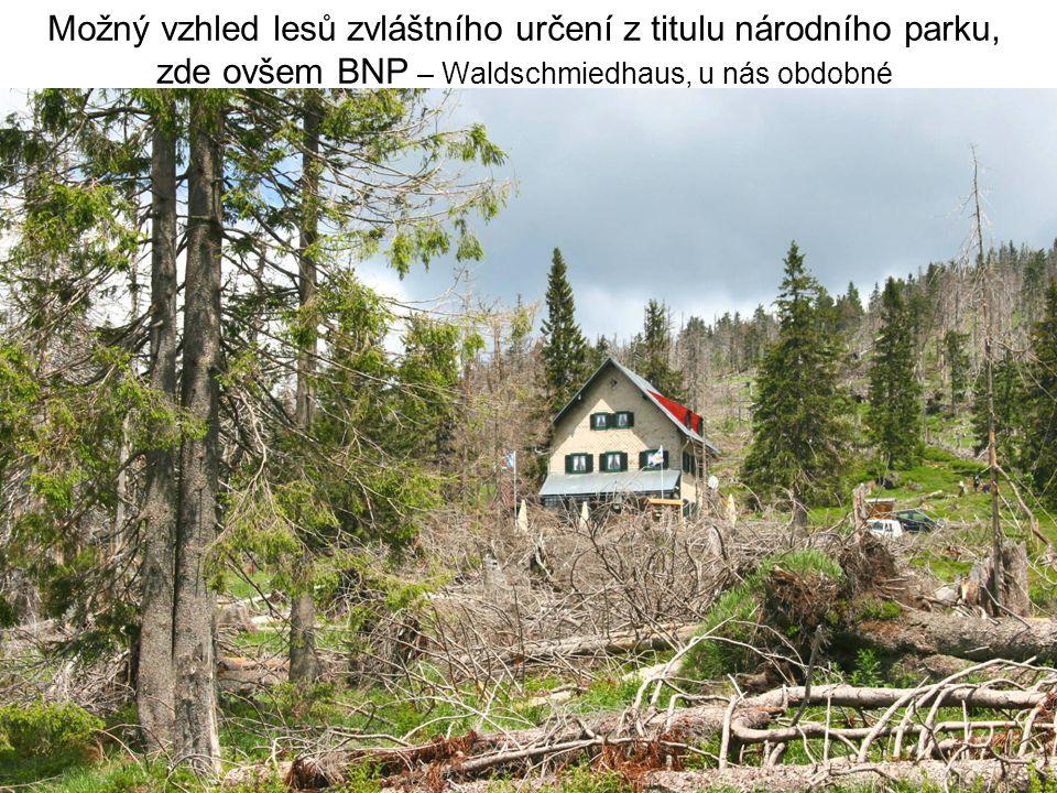 Možný vzhled lesů zvláštního určení z titulu národního parku, zde ovšem BNP – Waldschmiedhaus, u nás obdobné