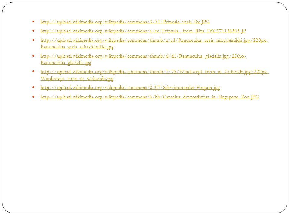 http://upload. wikimedia. org/wikipedia/commons/3/31/Primula_veris_0x