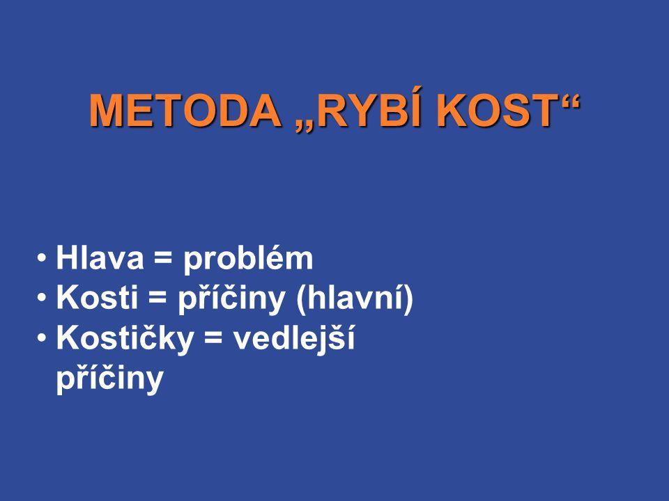 """METODA """"RYBÍ KOST Hlava = problém Kosti = příčiny (hlavní)"""