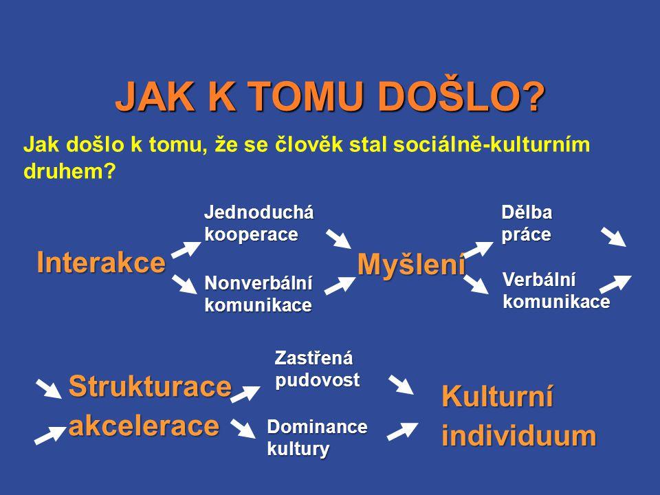 JAK K TOMU DOŠLO Interakce Myšlení Strukturace Kulturní akcelerace