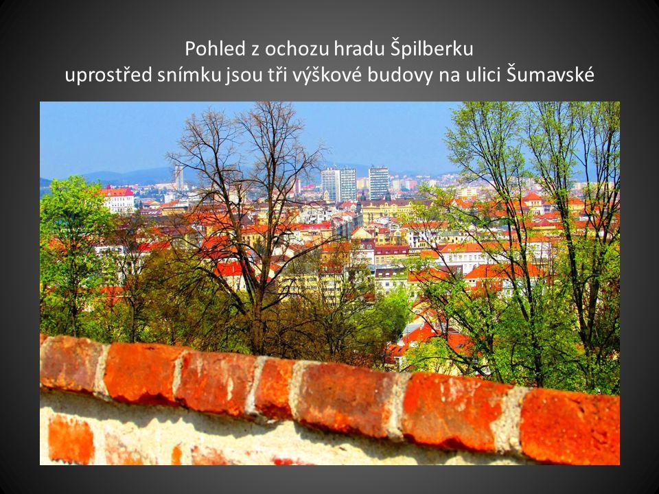 Pohled z ochozu hradu Špilberku uprostřed snímku jsou tři výškové budovy na ulici Šumavské