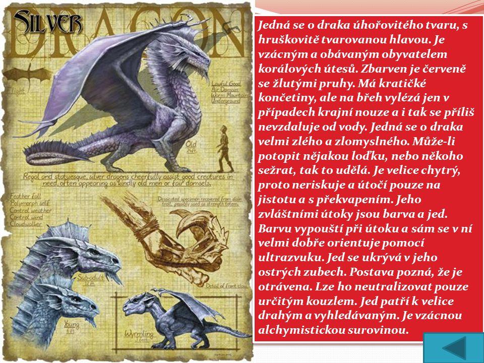 Jedná se o draka úhořovitého tvaru, s hruškovitě tvarovanou hlavou