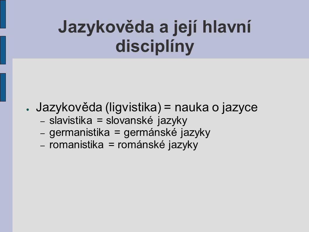 Jazykověda a její hlavní disciplíny