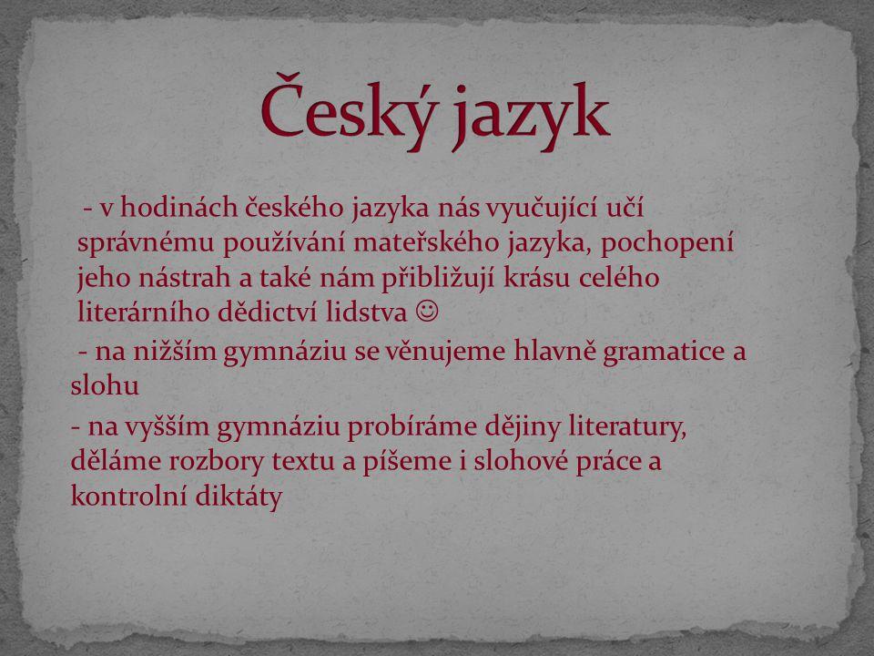 Český jazyk - na nižším gymnáziu se věnujeme hlavně gramatice a slohu