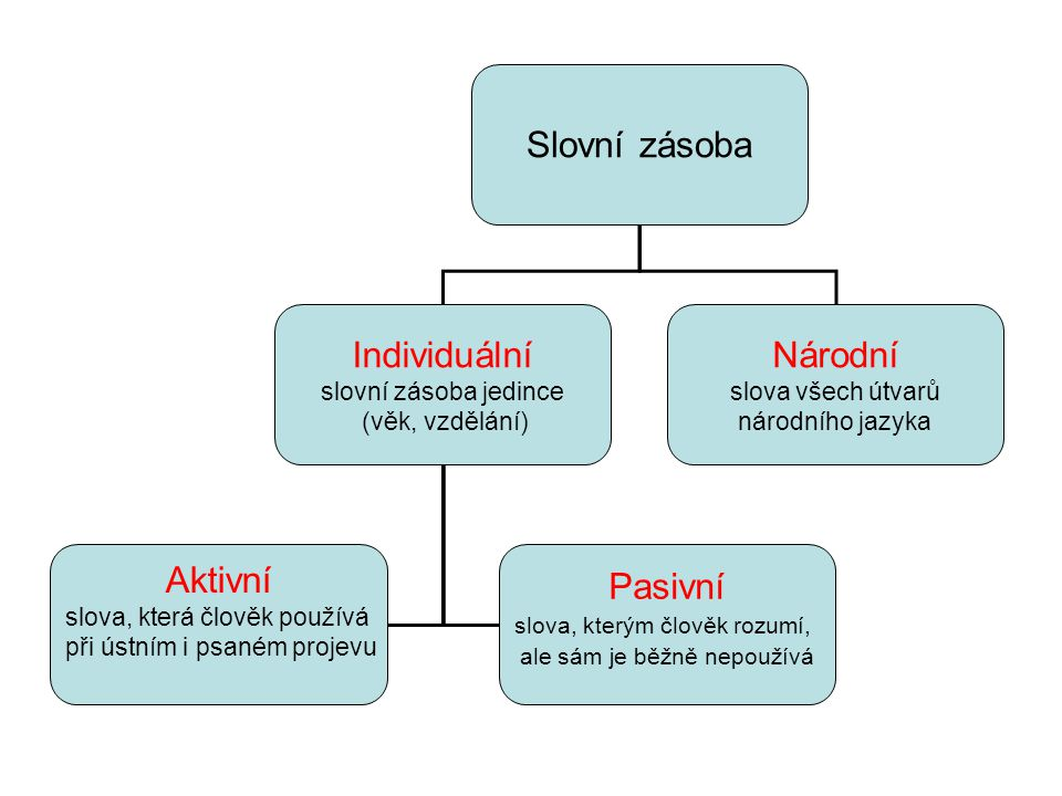 Slovní zásoba Individuální Národní Aktivní Pasivní