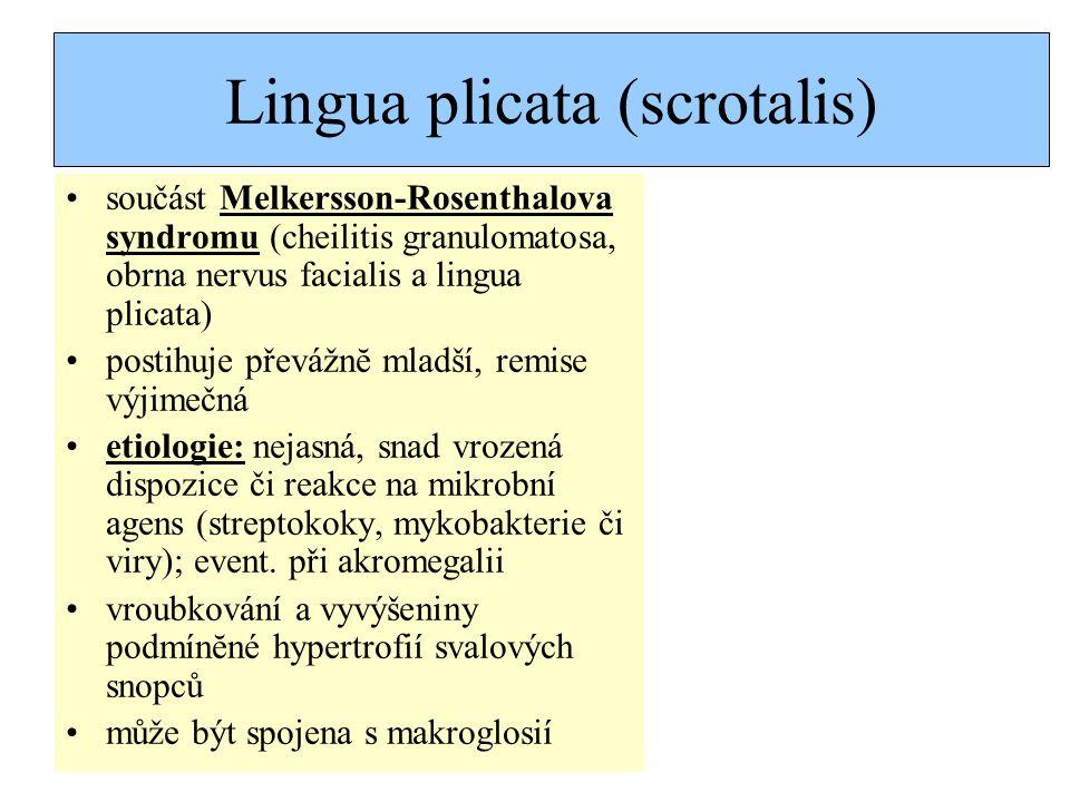 Lingua plicata (scrotalis)